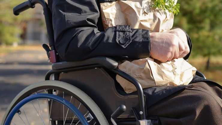 engelli hakları 20020